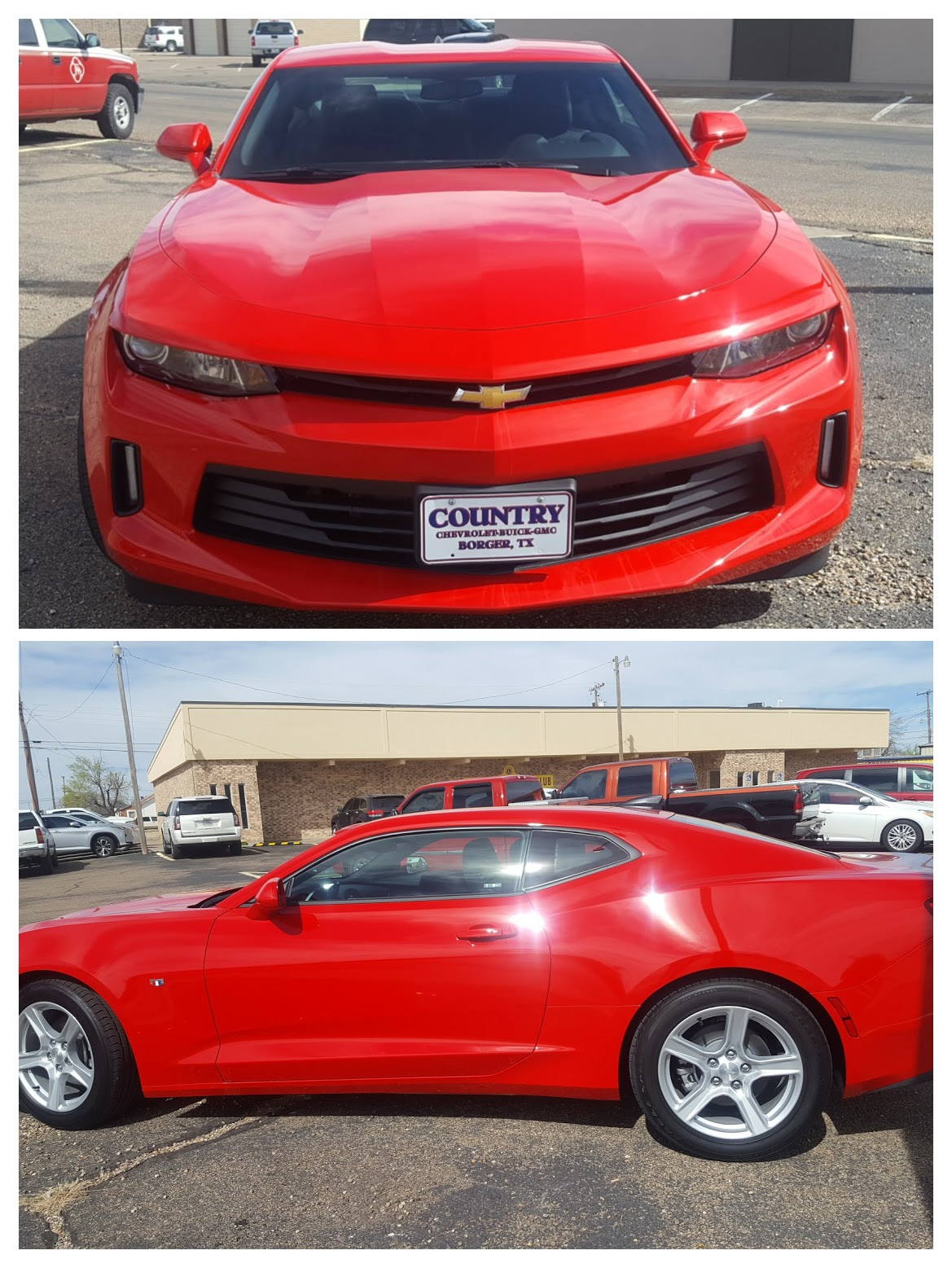 dumas noon lions club club home click here to buy your dogie days tickets online for the red hot camaro and for bbq tickets